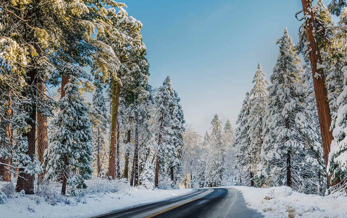 Driving in snowy or icy conditions is much different than other types of weather. Make sure your windows are cleared off before you get in the car.